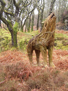 howling wolf woven from willow by Beryl Smith