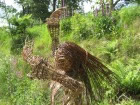 woven willow lady by Beryl Smith